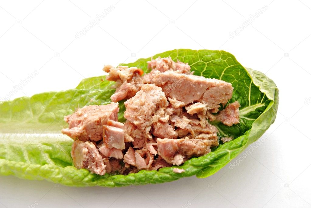 Lechuga y atún rodeado de fondo blanco — Stock Photo #7795083