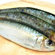 Tres sardinas - Stock Photo