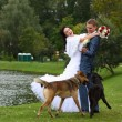 Bride and Groom Outside and dogs — Stock Photo