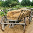 Wooden wagon — Stock Photo #7836953