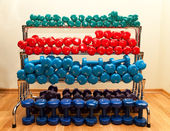 Rack With Colored Dumbbells — Photo