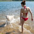 Girl splashes on a dog - Stock fotografie