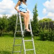 Stock Photo: Womon ladder in garden
