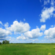 Green field and blue sky panorama — Stock Photo