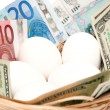 Eggs with money in basket closeup — Stock Photo