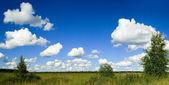 蓝蓝的天空和外地全景 — 图库照片
