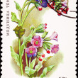 Russia Postage Stamp Flower Lungwort Plant Pulmonaria Obscura - Stock Photo