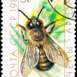 Canceled Soviet Russia Postage Stamp European Honey Bee Drone - Stock Photo