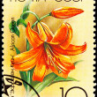 Canceled Soviet Russia Postage Stamp Orange Lily Flower, African - Stock Photo