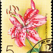 Canceled Soviet Russia Postage Stamp Spotted Pink Lily Lilium Sp - Stock Photo