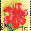 Canceled Soviet Russia Postage Stamp Red Eclat du Soir Lily - Stock Photo