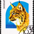 Canceled Soviet Russia Postage Stamp Big Cat Eurasian Lynx Lynx - Stock Photo