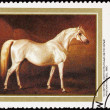 Soviet Russia Post Stamp Painting White Horse Nikolai Sverchkov — Stock Photo
