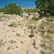 Desert Wash Arroyo Showing Erosion New Mexico - Stock Photo