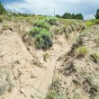 Desert Wash Arroyo Showing Erosion New Mexico — Stock Photo #7894728