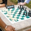 Stock Photo: Two Players Play Timed Chess Game in Park