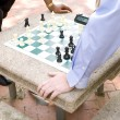 Two Men Playing Chess in a Park — Stock Photo #7894828