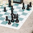 Stock Photo: Chess Game Board Timer in Park
