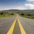 Middle of the Road Curve, High Desert, New Mexico — Stock Photo #7894908