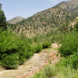 Stream Sangre De Cristo Mountains New Mexico USA - Stock Photo