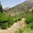 Stream Sangre De Cristo Mountains New Mexico USA - Foto Stock