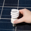 Stock Photo: Hand Compact Fluorescent Light Bulbs Solar Panel