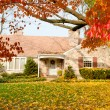 Stock Photo: House PhiladelphiYellow Fall Autumn Leaves Tree