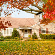 House Philadelphia Yellow Fall Autumn Leaves Tree - Stock Photo