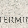 Word &quot;Determined&quot; Carved in Gray Granite Stone - 