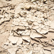 Stock Photo: Full Frame Dried Cracked Mud New Mexico