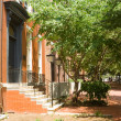 Brick Colonial Row Homes Street Sidewalk DC USA — Stock Photo #7895680