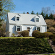 XXXL Clapboard Cape Cod Single Family House Suburban Maryland, U — Stok fotoğraf