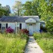 XXXL Front View Abandoned Foreclosed Cape Cod Home Long Grass — Stock Photo