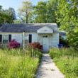 Stock Photo: XXXL Front View Abandoned Foreclosed Cape Cod Home Long Grass