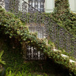 Ivy Covered Staircase Outside Home Savannah Georgia Wrought Iron - Stock Photo