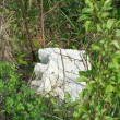 Chunk of Styrofoam in Brush and Weeds Littering Pollution Theme - Stok fotoraf