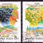 Ungarische Briefmarke Celibrating Wein machen Regionen abgebrochen — Stockfoto