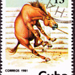 Canceled Cuban Postage Stamp Wild Horse Leaping Corral Lasso Nec - Stock Photo