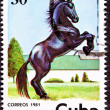 Canceled CubPostage Stamp Black Horse Rearing Up in Field — Stock Photo #7897075