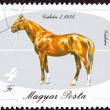 zrušeno Maďarsko poštovní známka maďarských koní plemen gidran iso — Stock fotografie