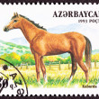 Canceled AzerbaijPostage Stamp Brown, KabardBreed Horse Sta — Stock Photo #7897109