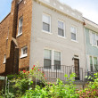 Federal Style Corner Row Home, Lush Garden, Washington DC, USA — Stock Photo #7897113