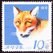 Canceled North Korean Postage Stamp Fox Canidae Head Shoulders I - Stock Photo