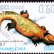Cambodian Postage Stamp Yellow Bell's Dabb Spiny-Tailed Lizard U — Stock Photo