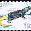 Stock Photo: Canceled Cambodian Postage Stamp Yellow Common Chuckwalla Saurom