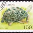 Canceled Azerbaijan Postage Stamp Leopard Tortoise Geochelone Pa - Stock Photo