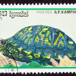 Canceled CambodiPostage Stamp Eastern Box Turtle Terrapene Ca — Stock Photo #7897230