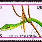 Постер, плакат: Canceled Cambodian Postage Stamp Head Green Vine Snake Ahaetulla