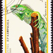 Stock Photo: Canceled CambodiPostage Stamp Green Lizard, IguanGripping T