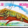 Canceled NicaraguPostage Stamp Green IguanLizard Branch Mar — Stock Photo #7897249